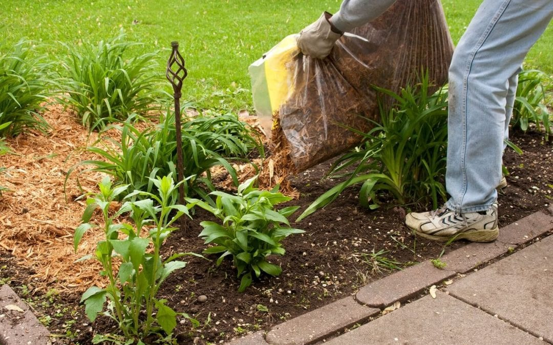 summertime upgrades to your home include adding mulch